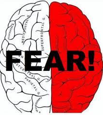 fear brain